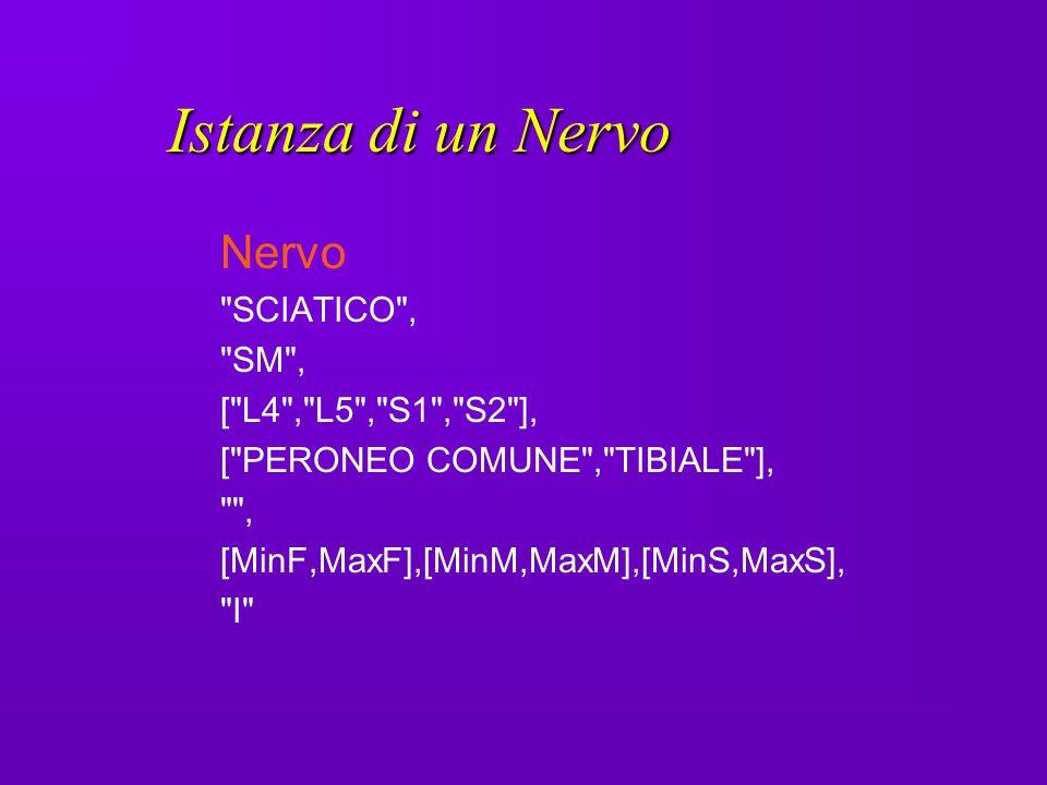Istanza di un Nervo Nervo SCIATICO , SM , [ L4 , L5 , S1 , S2 ],